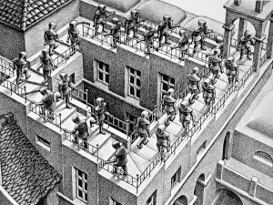 Escher dissocial