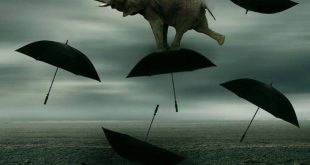 L'insostenibile leggerezza delle pensioni